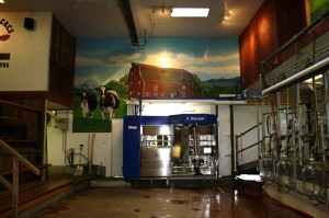 DeLaval VMS Robotic Milker waiting for action. Mar 21/12